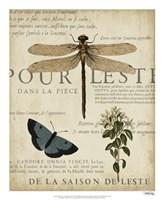 Specimen of Natural Beauty II Framed Print