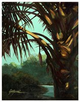 Dark Palm Fine Art Print
