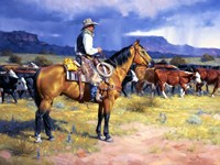 Great American Cowboy Framed Print