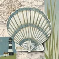 Seaside Shell II Framed Print