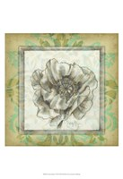 Victorian Poppy I Framed Print