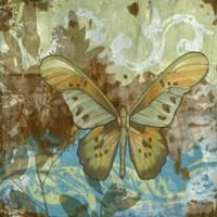 Rustic Butterfly II Framed Print