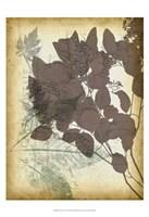 Leaf Letters I Framed Print