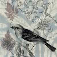 Autumn Songbird II Framed Print