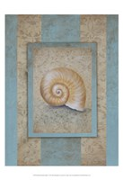 Shell & Damask Stripe I Framed Print