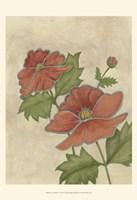 Flower Medley IV Fine Art Print