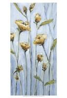 Wishing Blooms Fine Art Print