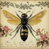 From the Rose Garden I Fine Art Print