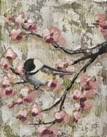 Cherry Blossom Bird II Fine Art Print