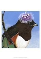 You Silly Bird - Donna Fine Art Print