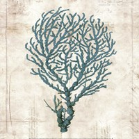 Under the Sea I Framed Print
