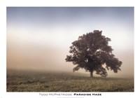 Paradise Haze Fine Art Print