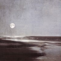 Moonlit Beach Fine Art Print