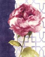 Antique Floral on White II Framed Print