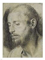 Study of the Head of a Bearded Man Fine Art Print