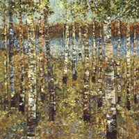 Purple Birch Fine Art Print
