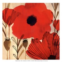 Wild Poppies I - Mini Fine Art Print