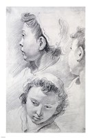 Three Studies of the Head of a Youth Fine Art Print