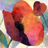 Poppy I Fine Art Print