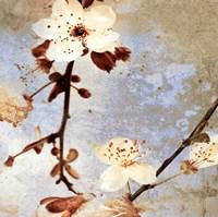 Fresh Blossoms 1 Fine Art Print