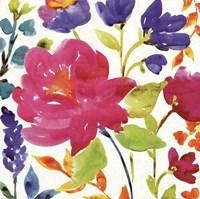 Floral Medley II Fine Art Print