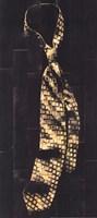 Single Man's Tie III Fine Art Print
