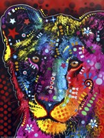 Young Lion Fine Art Print