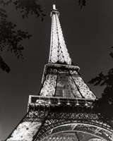 Eiffel Tower at Night Fine Art Print