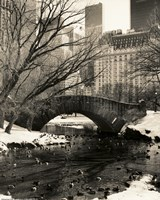 Gapstow Bridge NYC Fine Art Print