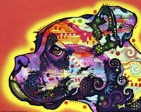 Profile Boxer 1 Fine Art Print