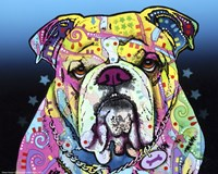 The Bulldog Framed Print