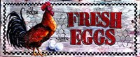 Fresh Eggs Fine Art Print