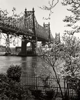 59Th Street Bridge Framed Print