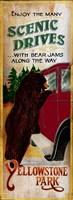 Bear Jams Fine Art Print