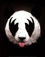 Panda Rocks Fine Art Print