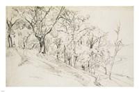 Forest in Boisremond Fine Art Print