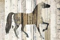 Dark Horse Fine Art Print