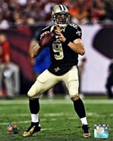 Drew Brees 2013 Action Fine Art Print
