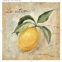 Le Citron Fine Art Print