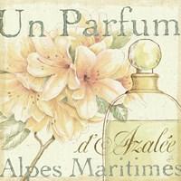 Fleurs and Parfum III Framed Print