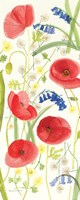 Meadow Poppies II Fine Art Print