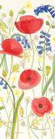Meadow Poppies III Fine Art Print
