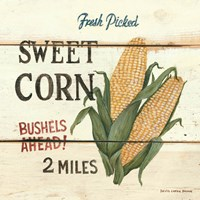 Fresh Picked Sweet Corn Fine Art Print