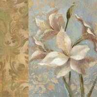 Amaryllis on Soft Blue Fine Art Print