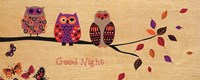 Good Night Owl Framed Print