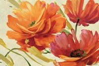 Flamboyant III Fine Art Print