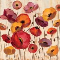 Sunrise Anemones Fine Art Print
