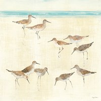 Sandpipers Fine Art Print