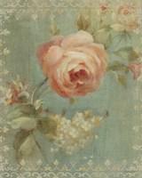 Rose on Sage Fine Art Print