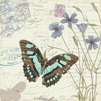 Papillon Tales I Framed Print